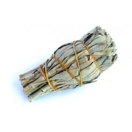 Biała szałwia (pęk 15-19g) kadzidło oczyszczające (White Sage / SALVIA APIANA)