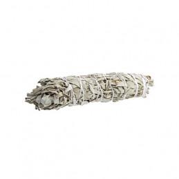 Biała szałwia (pęk 80-99g) kadzidło oczyszczające (White Sage / SALVIA APIANA)