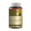 Ashwagandha 500 mg - 60 kaps.