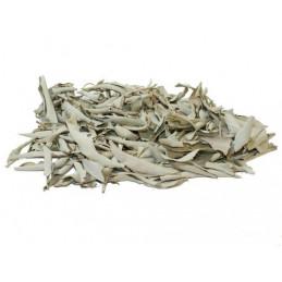 Biała szałwia (susz 25g) kadzidło oczyszczające (White Sage / SALVIA APIANA)