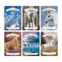 Magiczne Jednorożce - książka + karty