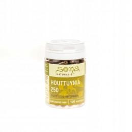 Houttuynia 250 mg - 100 kapsułek