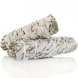 Biała szałwia SALVIA BLANCA (pęk 10,5 cm / 25-30g)