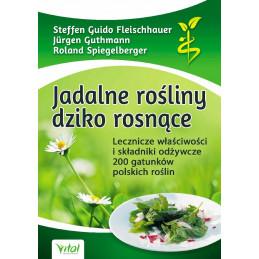Jadalne rośliny dziko rosnące. Lecznicze właściwości i składniki odżywcze 200 gatunków polskich roślin