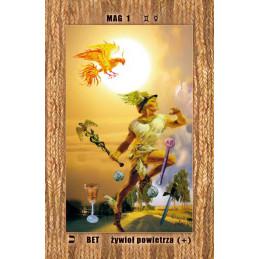 tarot archetypowy