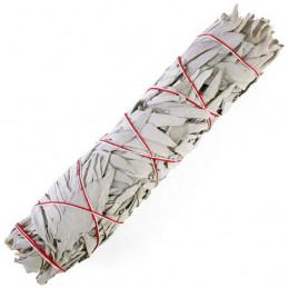 Biała szałwia (pęk 40-50 g) kadzidło oczyszczające (White Sage / SALVIA APIANA)