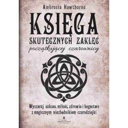 (Ebook) Księga skutecznych...