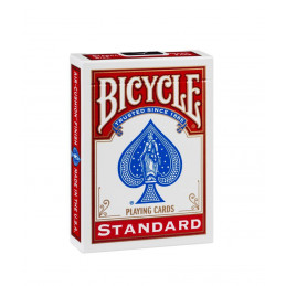 Bicycle RIDER BACK Standard...