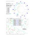 Horoskop urodzeniowy-wykres drukowany